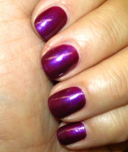 elf_royal purple2