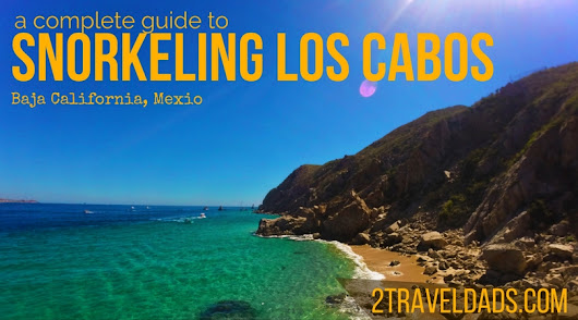 Snorkeling in Cabo San Lucas: a complete family guide