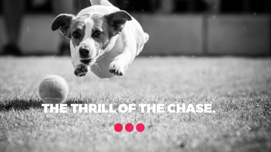 The thrill of the chase - how we defined Signal's purpose and princip…