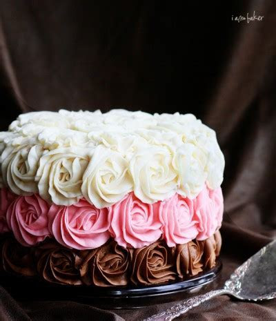 Neapolitan Cake {VIDEO}   i am baker
