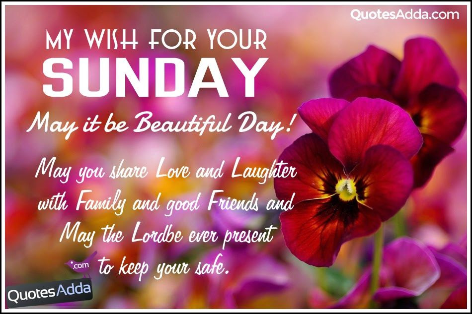 My Wish For Your Sunday Pictures Photos And Images For Facebook