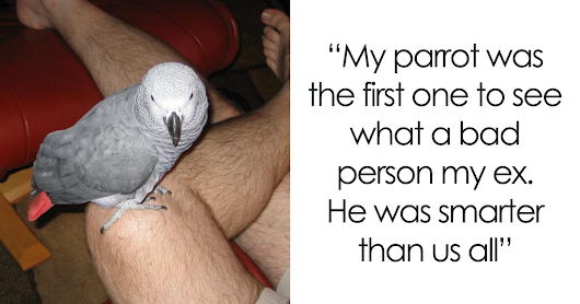 Tumblr Users Share Hilariously Unbelievable Encounters That Prove Parrots Have Sense Of Humor