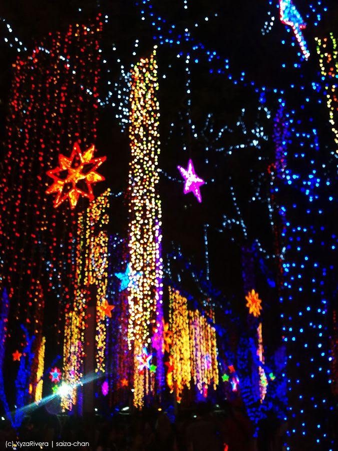 Christmas Light Source | Christmas Ideas