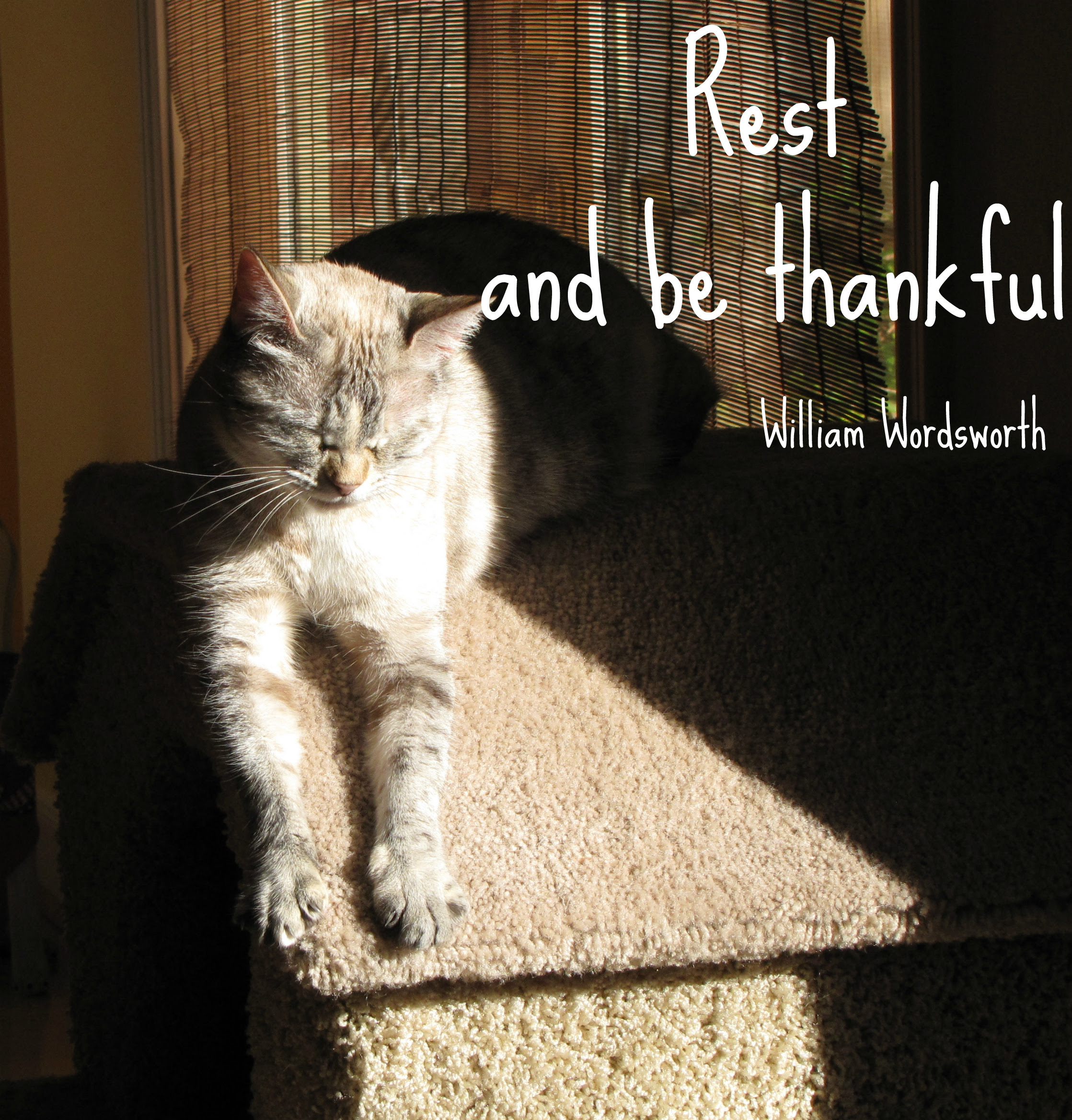 Mina Rest