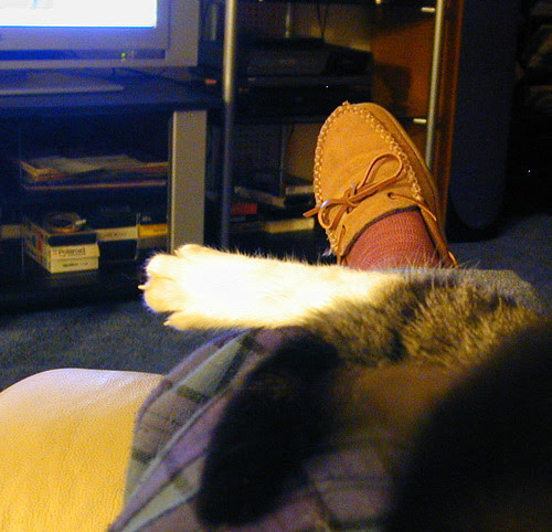 2 Feet. 1 Tail