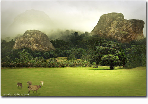 foggy hill composite image