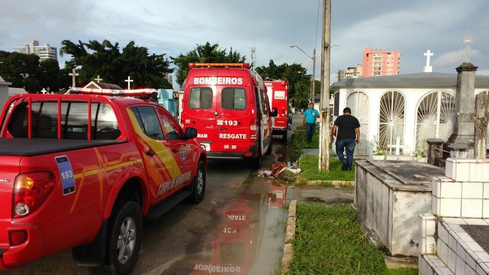 Bombeiros foram acionados para resgate  (Foto: Divulgação/Corpo de Bombeiros)
