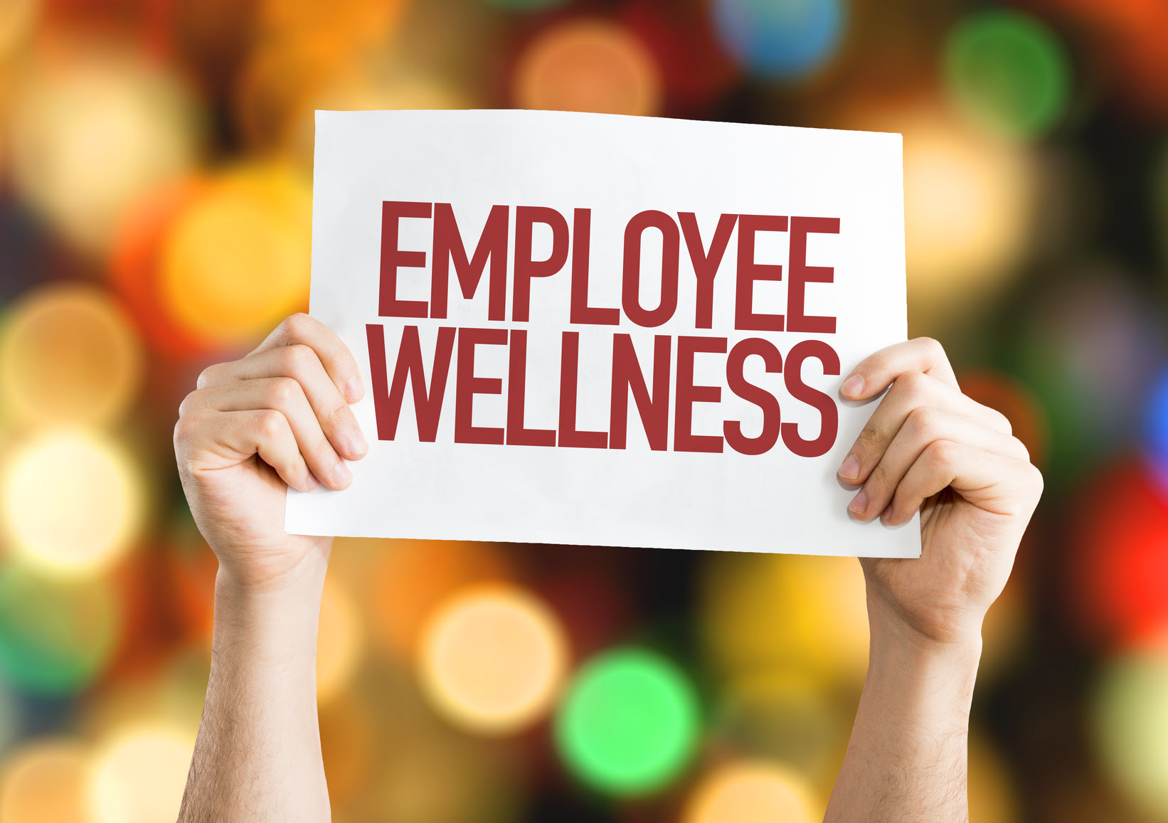 Employee Wellness Programs: What You Should Know   EINSURANCE