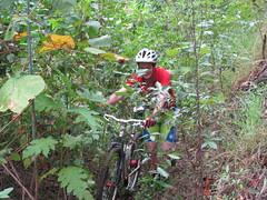 Climbing Mt Samson on a bike