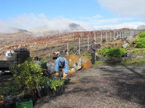 Foto 09-Campo de Educação Ambiental do Cabeço da Lenha-12.02.12(RQ)