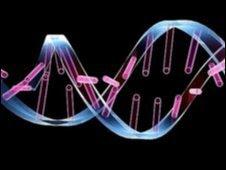 Unzipping DNA (SPL)