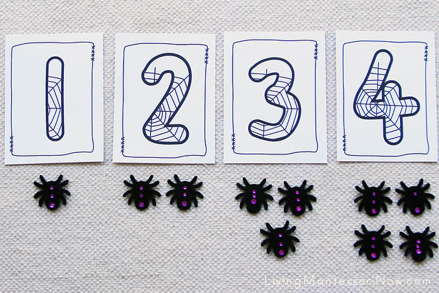 Spider Numbers and Counters Layout