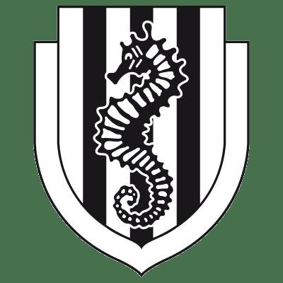 AC Cesena - Logopedia, the logo and branding site