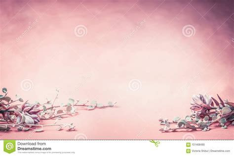 Pink Floral Background With Flowers And Leaves, Banner Or