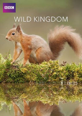 Wild Kingdom - Season 1