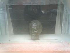 head in window