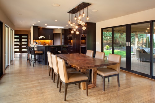 I love the light fixture over the dining table, can you tell me ...