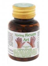 Spring Reum Art - 60 Compresse