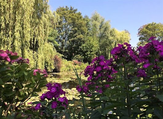 Claude Monet's garden in Giverny in summer - Mum's Gone To ...