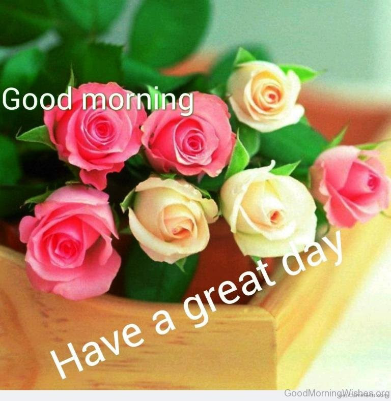17 Good Morning Have A Great Day Images
