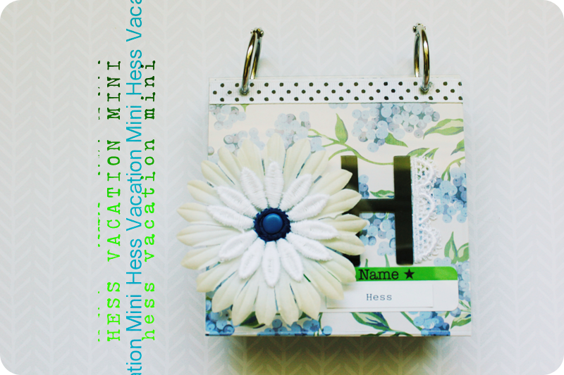 {minibook} hess vacation | cover