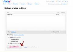 flickr-blogger-11