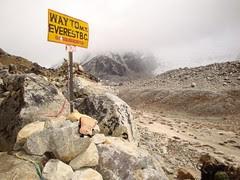 Mr Toast Visits Everest Base Camp