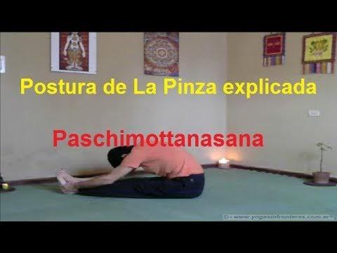 Video: Postura de la Pinza - Pschimonttanasana - Clase explicativa.