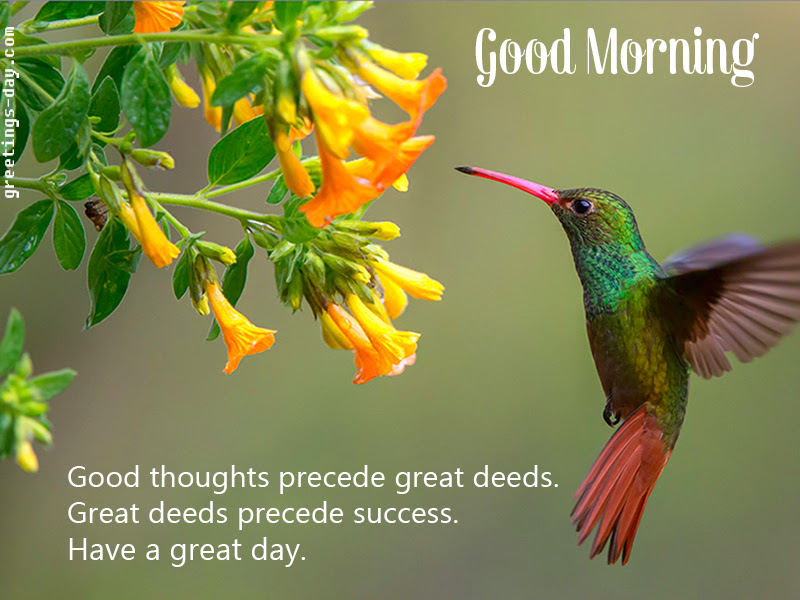 Greeting Cards For Every Day Good Morning Message Have A Great Day