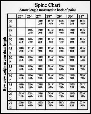 Arrow Spine Chart Easton : arrow, spine, chart, easton, Arrow, Spine, Chart, Gallery