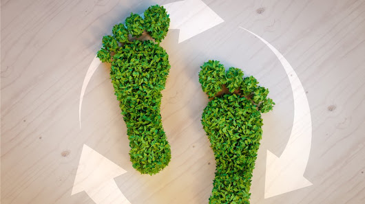 25 Ways for Your Small Business Reduce Its Carbon Footprint