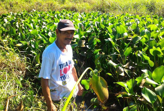These Are 2 Crazily Innovative Cleantech Solutions Helping Farmers In The Philippines