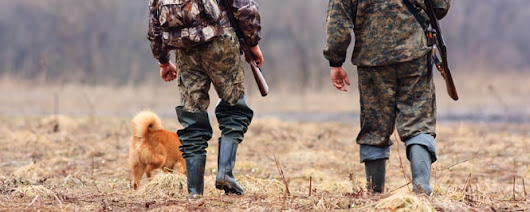 3 Ways a Security Consultant is Like a Hunting Partner - Cognoscape, LLC