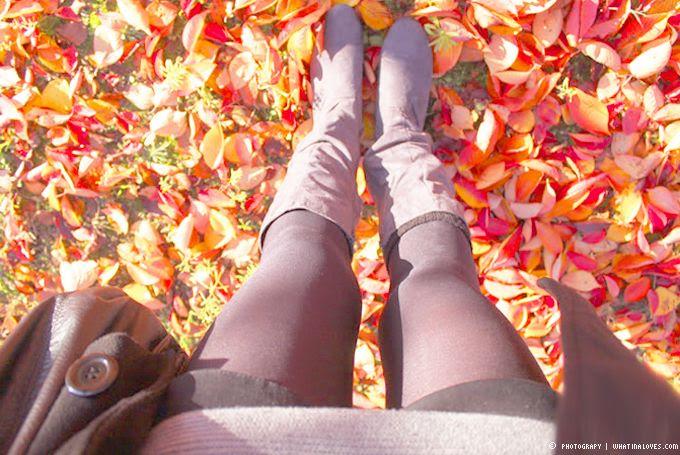 http://i402.photobucket.com/albums/pp103/Sushiina/cityglam/autumn3_zpsaf06ec1e.jpg