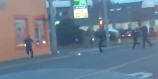 Video apparently shows Washington cops shooting and killing man who ran away with his hands up
