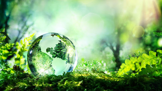 How a Sustainable Lifestyle will Save the Planet & Humanity