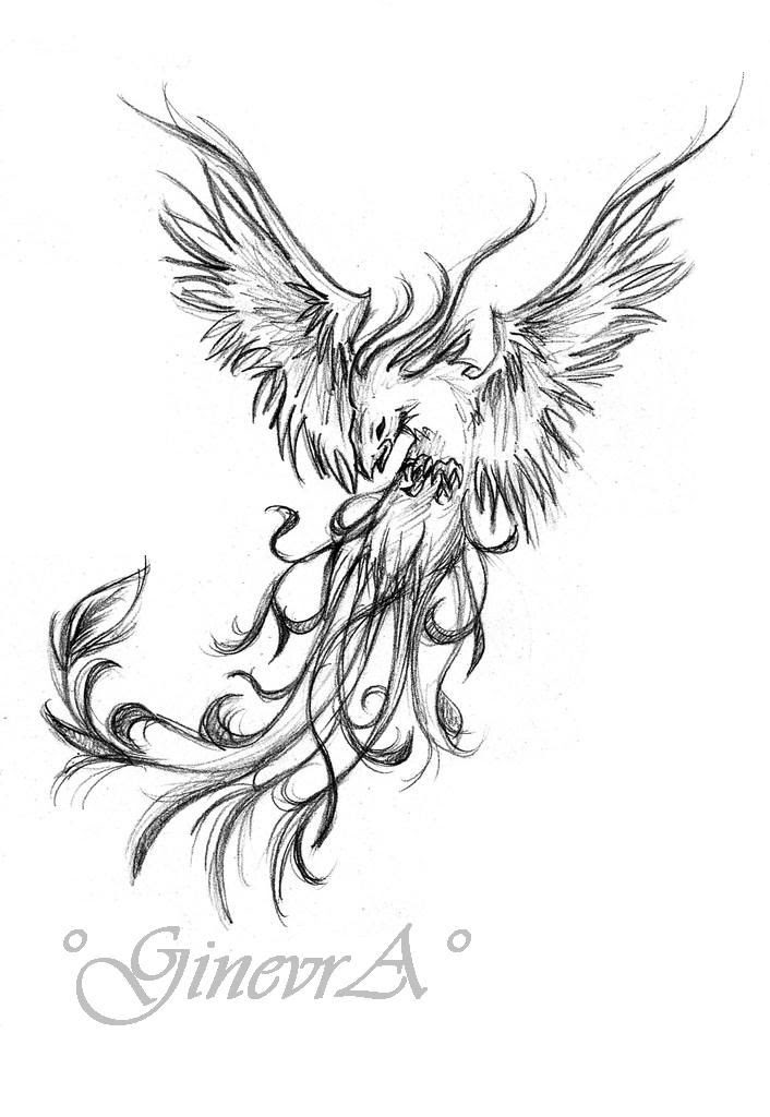 Phoenix Silhouette Tattoo At Getdrawingscom Free For Personal Use