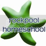 the rockpool home school forums