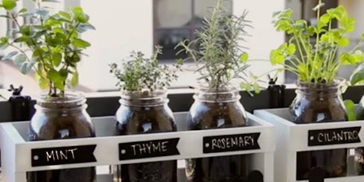 You Can Plant Fresh Herbs In Minutes With This Mason Jar Herb Garden! - DIY Joy