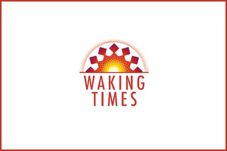 http://www.wakingtimes.com/wp-content/uploads/2014/11/HealingHands.jpg