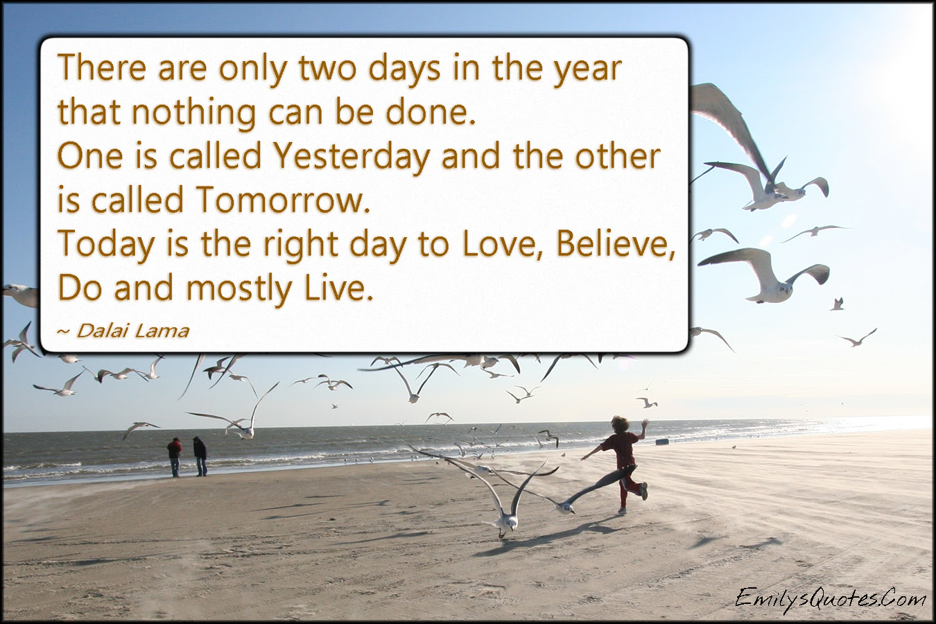 There Are Only Two Days In The Year That Nothing Can Be Done One Is