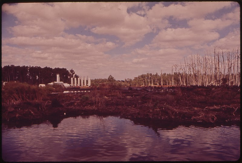 File:BAYOU SEGNETTE SWAMPLAND, WHICH HAS BEEN DEVASTATED BY RUNOFF PETROLEUM SLUDGE FROM THE NATURAL GAS INSTALLATION IN... - NARA - 546073.tif