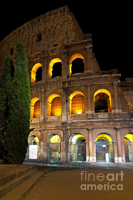 Colosseum by Francesco Emanuele Carucci