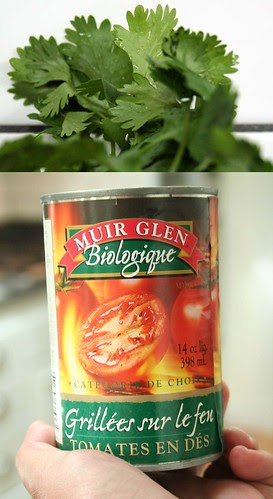 salsa makings