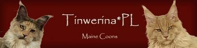 http://www.tinwerina.pl