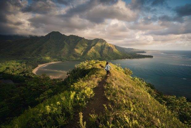 Snorkels to Ziplines: 4 Ways to See All the Natural Beauty Maui Has to Offer