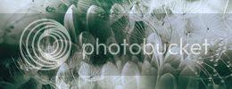 http://i757.photobucket.com/albums/xx217/carllton_grapix/blogtexturecarllton45a.jpg