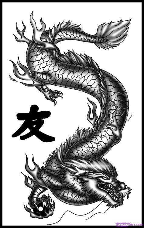 draw dragon art step  step dragons draw