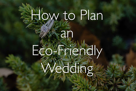 How to Plan a Green Wedding | Eco-friendly Weddings