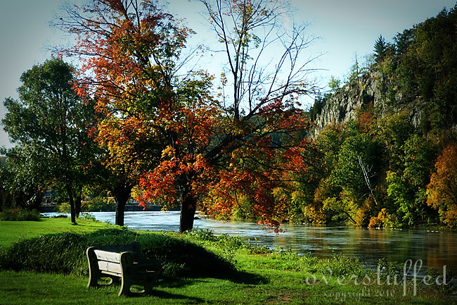 A bench, some water, and the fall leaves